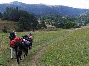 Ariège Randonnée Prades Comus Anes Bat Marche Montaillou Chioula
