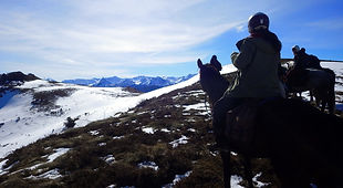 2021-02 - Ariège - Pôle Equestre -  (35)