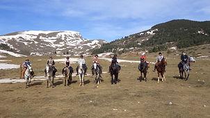 2021-02 - Ariège - Pôle Equestre -  (52)