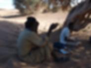 Guelb El Richat, Adrar, Mauritanie, arbre de madame monod