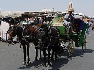 Marrakech, Jema  El Fnaa