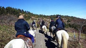 2021-02 - Ariège - Pôle Equestre -  (16)