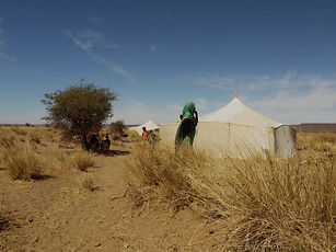 Zrig Mauritanie