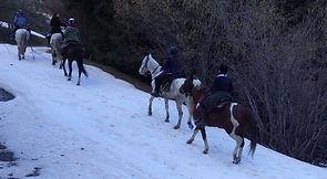 2021-02 - Ariège - Pôle Equestre -  (43)