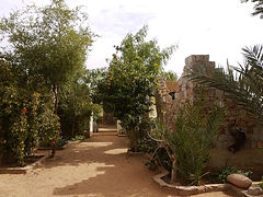 Mauritanie, Adrar, chinguetti, désert, Eden, Mahmoud, Ould beija