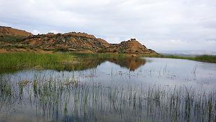 Bardenas, Nemesia