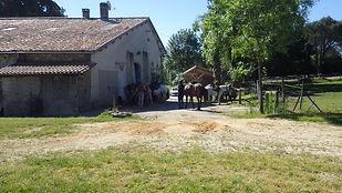A la Sanade, Centre Equestre, Dordogne