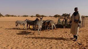 2019-02 - Mauritanie - Adrar - Boucle de