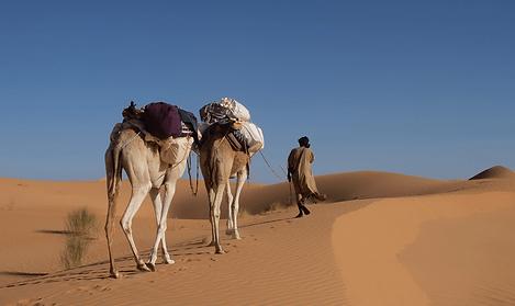 randonnées, voyages, désert