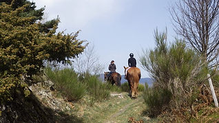 2021-04-02 - Junts  - Vallespir - Rando