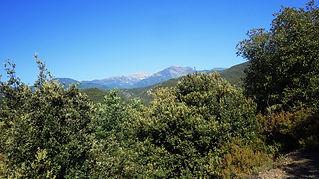 Junts, Randonnée, équestre, cheval, Vallespir, Arles sur Tech, Amandine, Aineto, Pyrénées orientales, PO, canigou