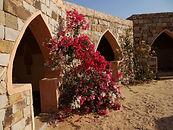 Mahmoud, Mahmoud Ould Beija, Eden, Chinguetti, Adrar, Mauritanie