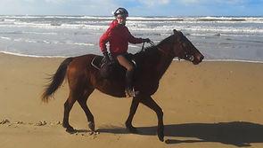 Randonnée Equestre, Mimizan, Landes, Forêts, Plages