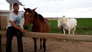 Raphaël Seibold, randonnée équestre, accompagnateur équestre, vallée d'ossau, sierra des Guara, Bardenas