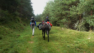 Ariège  Randonnée Anes Prades