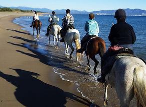 Randonnée - Cheval - équestre - ruta - caballo - espagne - españa  - catalogne
