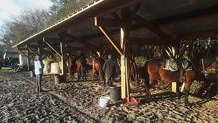 Centre Equestre marina, Mimizan