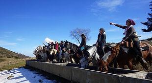 2021-02 - Ariège - Pôle Equestre -  (95)