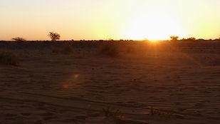 Lever de Soleil sur le désert