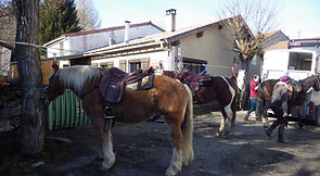 2021-02 - Ariège - Pôle Equestre -  (09)