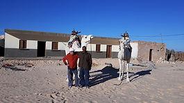 Douz, Tunisie, Festival, Dromadaire, Marathon, course, désert, sahara