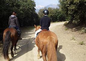 Junts, Amandine, aineto, vallespir, chevaux, randonnée, équestre, cheval, Formentère, Batère, Arles sur Tech