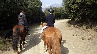 Junts, Vallespir, Pyrénées, orientales, cheval, chevaux, randonnées, Equestres, Arles, Tech, Amandine, Aineto