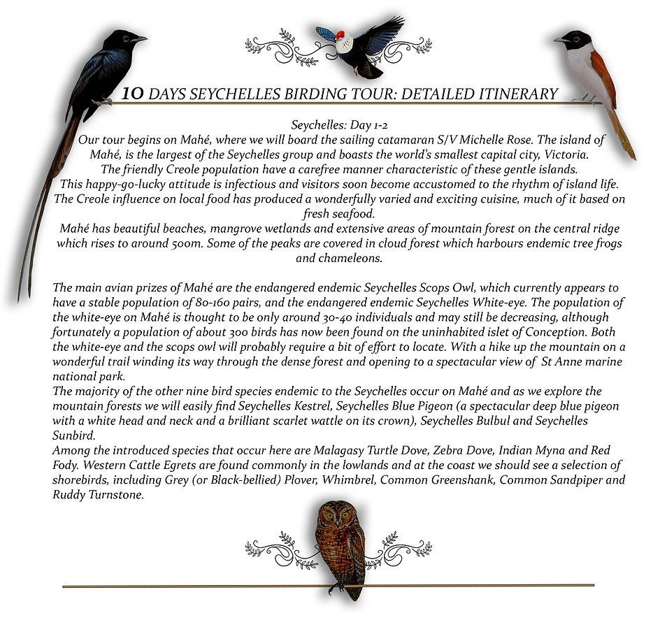 Birding Day 1.jpg