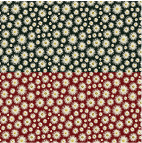 Devonstone Flowers of Australia - Gum Blossom Black/Red