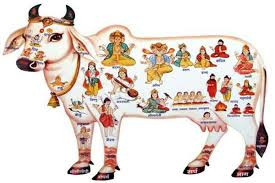 """Nakshatra 10 - Magha - Jyotish, Ciencia de la Luz"""""""
