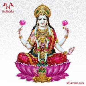 Swarma Gauri Vratam - Jyotish Navil Gauri - Astrología Médica