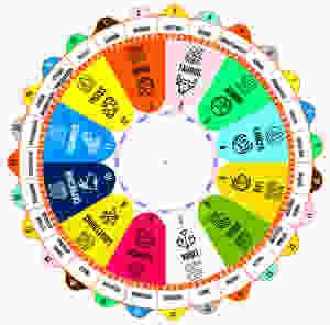 Los 12 Signos (Rashis) en Astrología Védica -