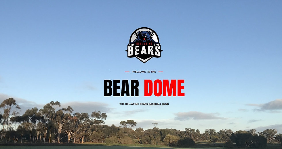 Bears Website Front Page.jpg