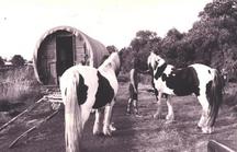 horsedrawn05.png