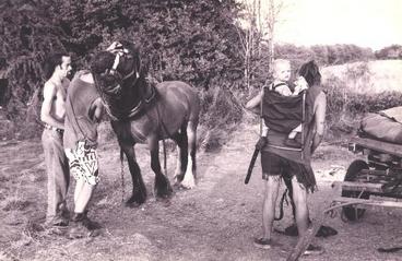 horsedrawn04.png