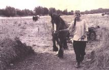 horsedrawn07.png