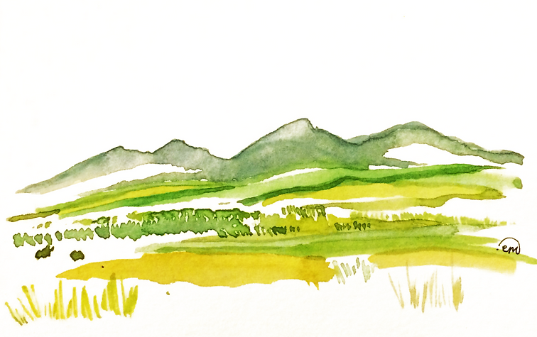 mountain and field.png