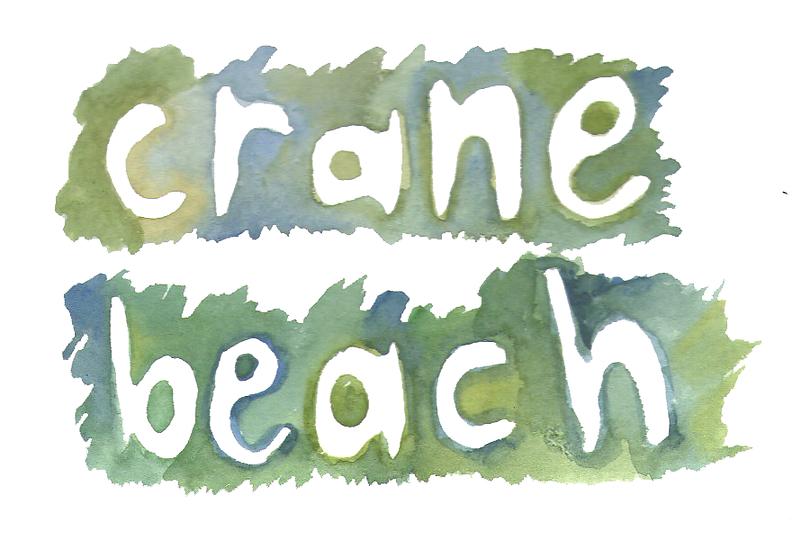 crane beach 1.png
