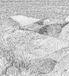 5x7_vesper dune-aspire nobly_edited.jpg