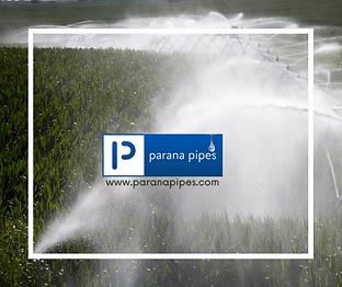 Parana Pipes (2).png