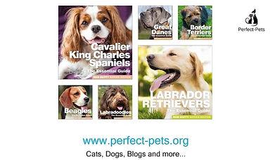perfect pets logo.jpg