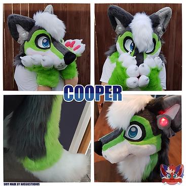 Cooper Showcase.png