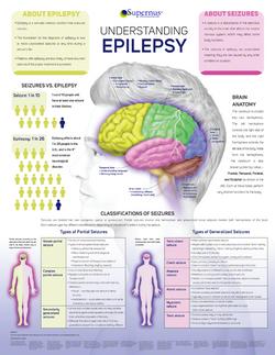 Epilespy Brain Chart