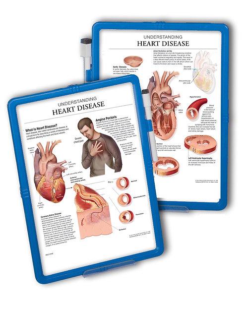 Heart Disease  - Wipe-off Easel