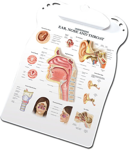 Ear, Nose, and Throat - Clipboard