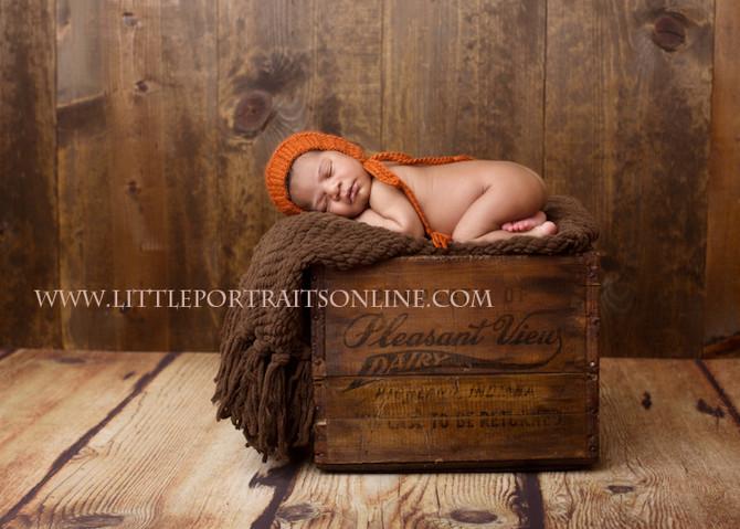 Greyson   Lake County Newborn Photographer
