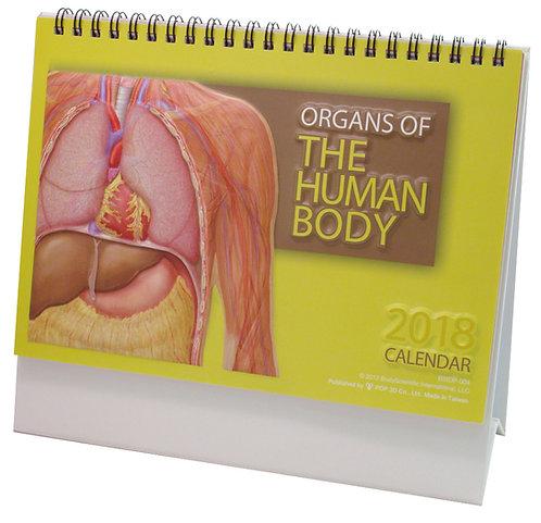 Organs of the Human Body - Wall Calendar
