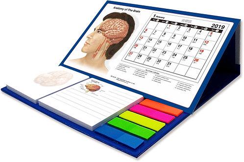 Anatomy of the Brain - Desktop Calendar