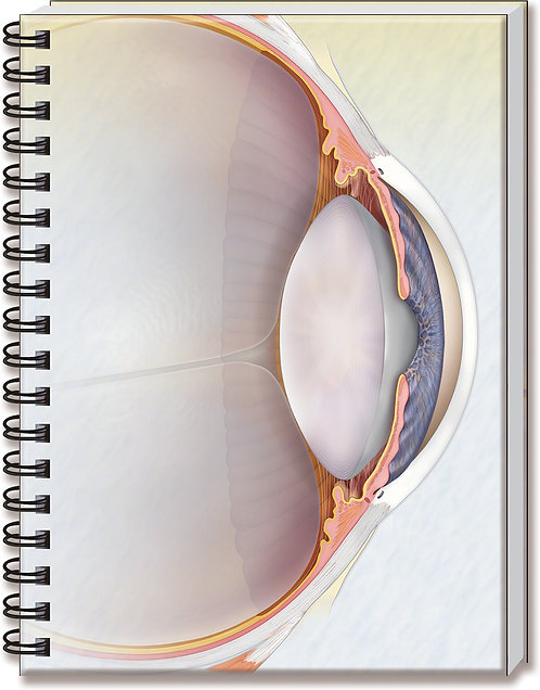 Glaucoma - Doctor's Notebook