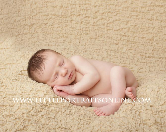 Graham | Lake County Newborn Photographer